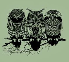 ♥ FANtÁSTICO MUNDO DA PRI ♥: Tatuagem Coruja - Owl Tattoo