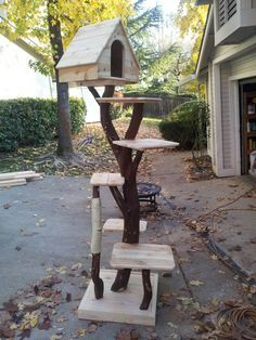 DIY Pinspiration: Make a Cat Tree with real branches for cool, natural look. Hom… DIY Pinspiration: Make a Cat Tree with real branches for cool, natural look. Homemade for Cats. Outdoor Cat Tree, Cat Scratching Tree, Cat Tree Plans, Cat Tree House, Cat House Diy, Diy Cat Tree, Cat Towers, Cat Shelves, Photo Chat