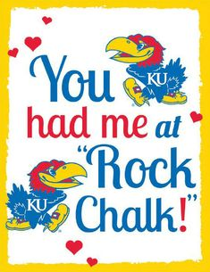 Twitter / phoggg: The Phog Photo of the Day: ...