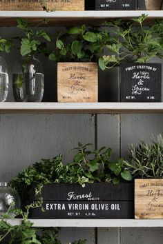 Wooden box: Antiqued wooden box with a text print and pads underneath. The antique look means the appearance of each box can vary. Shop Interiors, Rustic Interiors, Pallet Crates, Pallets, Antique Wooden Boxes, Pot Storage, Herb Garden In Kitchen, Deco Nature, Small Outdoor Spaces