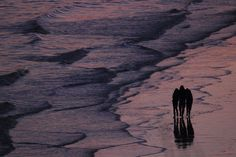 Polyamory on the shore by wilkopicture