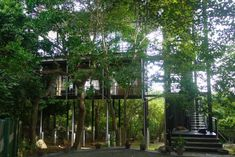 Tree-house between Galle and Unawatuna Beach - Hus til leie i Unawatuna, Southern Province, Sri Lanka