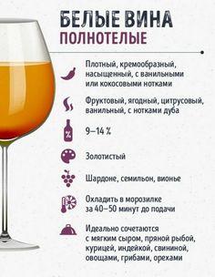Information About Wine Cellar Racks Chenin Blanc, Wine Cellar Racks, Different Types Of Wine, Home Wine Cellars, Wine Names, Wine Guide, Expensive Wine, Wine Art, Wine Pairings