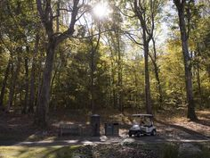 November 11, 2016 - Players enjoy a natural woodland landscape around the perimeter of Mirimichi golf course. Photo by Brandon Dill, Commercial Appeal.   http://www.commercialappeal.com/story/money/business/development/2016/11/14/mirimichi-drives-green-new-ways/93642332/