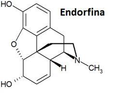 formula estrutural endorfina - Pesquisa Google