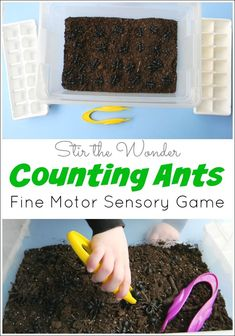 Ants: Fine Motor Sensory Game Counting Ants: Fine Motor Sensory Game is a fun way for preschoolers to practice early math skills!Counting Ants: Fine Motor Sensory Game is a fun way for preschoolers to practice early math skills! Insect Activities, Math Activities For Kids, Motor Skills Activities, Spring Activities, Preschool Activities, Math Skills, Preschool Prep, Sensory Games, Sensory Bins