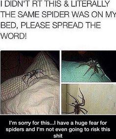 Not risking it