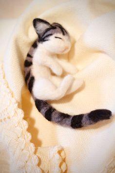 Sleeping adorable baby cat!!!