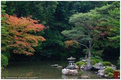 Chion-in () is a major temple in Kyoto and boosts the largest gate in Japan and has more than one garden.  The Hojo Garden is in the chisen kaiyushiki (garden which is designed around a pond) style. The garden exudes the moods of the four seasons. It i