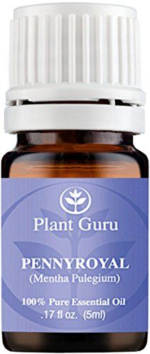 Botanical Name: Mentha pulegium Plant Part: Flowers * Extraction Method: Steam Distilled * Origin: France * Description: Penny Royal is a perennial herb that grows up to 20 in tall with smooth roundis...