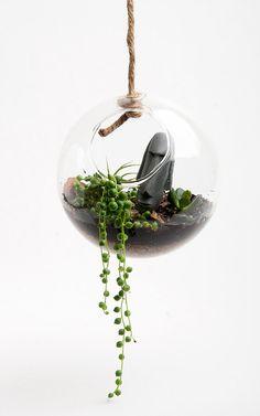 curtblurt: tiki terrarium! https://www.etsy.com/listing/96779236/hanging-round-terrarium-kit-desktop?ref=favs_view_7