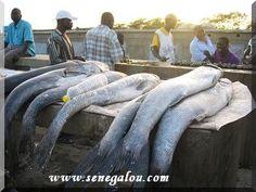Le Marché au poisson de Soumbédioune