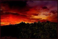 Image result for sunset images photography