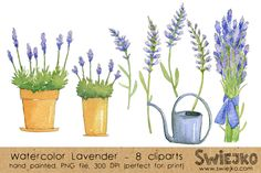 Beautiful, romantic set of 8 lavender cliparts, hand painted with watercolor. The possibilities of use are endless! It will be great embellishment for wedding invitations, greeting cards,