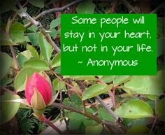 """How to Let Go of Someone You Love ... """"Some people will stay in your heart, but not in your life."""" - anonymous. #breakingup is painful, but #holdingon is worse."""