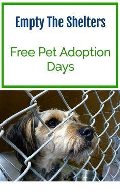 Empty the shelters - free pet adoption days. Cat and dog adoption days.