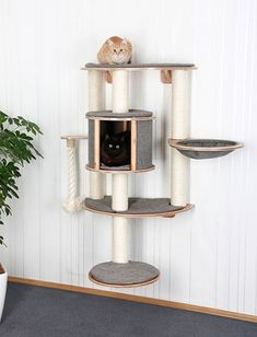 Kerbl Dolomit Tofana PRO Wall-Mounted Cat Tree, 112 x 103 cm, Grigio Diy Cat Tower, Wall Mounted Bookshelves, Animal Gato, Pet Food Storage, Cat Tree Condo, Cat Shelves, Cat Playground, Space Cat, Cat Crafts