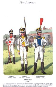 Napoleon's German Allies - Saxony 1806-1815 1_premier lieutnant saxon light infantry 1810-13 2_Jager 3_Musketer drummer