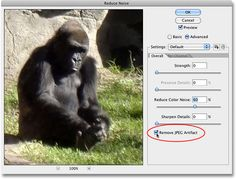 Reducing Noise In Images With Photoshop