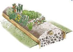 Comment démarrer un potager en permaculture Plus