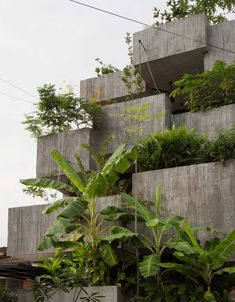 box house architecture This Cascading Planter Box House In Kuala Lumpur Celebrates Sustainable Living - IGNANT Cabinet D Architecture, Green Architecture, Architecture Design, Architecture Courtyard, Concrete Architecture, Architecture Student, Kuala Lumpur, Green Building, Building A House