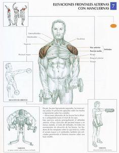 Ejercicio sencillo de hombro, siempre con flexión ligera de codo