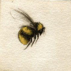104 Best Honey Bee Tattoo Images Bee Tattoo Bees Drawings