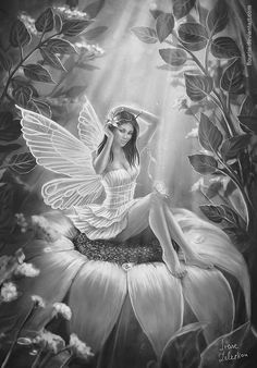 kleuren voor volwassenen, Fairy, Adult Coloring Page Beautiful Fantasy Art, Beautiful Fairies, Fairy Coloring Pages, Adult Coloring Pages, Elfen Tattoo, Foto Fantasy, Fairy Drawings, Fairy Tattoo Designs, Fairy Pictures