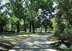 PRETTY. Sofia's parks are a favorite place for rest and recreation. Borisov Park is right in the center of the city, and South Park is next to the National Palace of Culture.