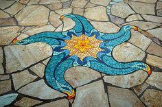Star Fish by Lance Jordan