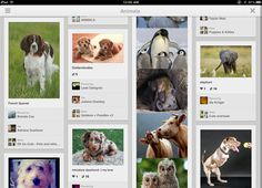 Pinterest Updates its Android App, Now Shows Bigger Images    http://www.cybertechnologynews.in/2012/10/pinterest-updates-its-android-app-now.html