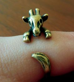I want this little ring.