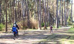 Biking in Jurmala, Latvia Biking, Country Roads, Cycling, Motorcycles, Bicycling, Riding Bikes