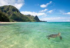 Tunnels Beach, Polihale State Park and Poipu Beach - Best beaches in Kauai