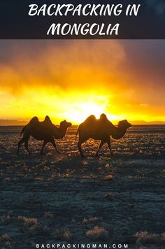 Travel in Mongolia - The Stunning Gobi Desert. Beautiful photos and information on how to travel on a budget into the Gobi Desert in Mongolia.