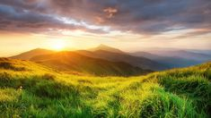 Mountain valley landscape during sunrise at summer time, Carpathian mountains, Ukraine, 8aea5e88e607eed58178c33561718b2d