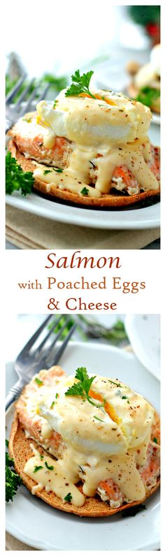 An easy and delicious salmon recipe. Salmon fillets topped with soft poached eggs and a wonderful homemade cheese sauce. An amazing dinner idea! Salmon Recipes, Fish Recipes, Seafood Recipes, Cooking Recipes, Healthy Recipes, Keto Recipes, Breakfast Dishes, Breakfast Recipes, Homemade Cheese Sauce