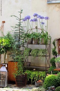 Bildresultat för blomsterbutiker med det lilla extra i Göteborg
