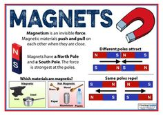 The Magnets Teaching Pack Grade 3 Science, Science Curriculum, Science Resources, Science Experiments Kids, Science For Kids, Activities, Facts For Kids, Fun Facts, Chemistry 101