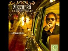 Love Is All Around (Still) - Zucchero - La Sesion Cubana