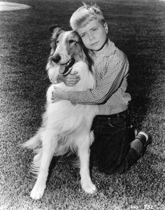 lassie tv show - Google Search