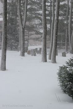 This winter wonderland photo is available as a free printable!