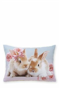 Photographic Bunny Cushion