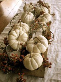 White Pumpkin Centerpieces, Pumpkin Arrangements, Centerpiece Ideas, Autumn Centerpieces, White Pumpkin Decor, White Centerpiece, Table Arrangements, Autumn Decorating, Pumpkin Decorating