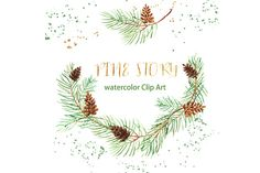 Pine branches. Watercolor Clip Art. by LABFcreations on @creativemarket