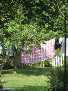 Pretty pink check vintage blanket drying on the line in the garden - summer 2014
