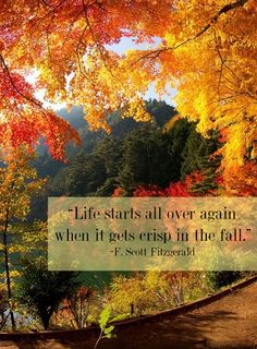 """Life starts all over again when it gets crisp in the fall."" YES!!!"