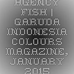 Agency Fish   Garuda Indonesia Colours magazine, January 2015