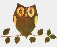Coisinhas a Mais Etc e Tal: Brincando na Floresta