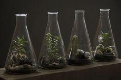Lab Glassware Repurposed - M2 Scientifics Blog